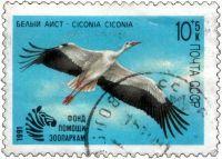 Белый аист CICONIA CICONIA Фонд помощи зоопаркам